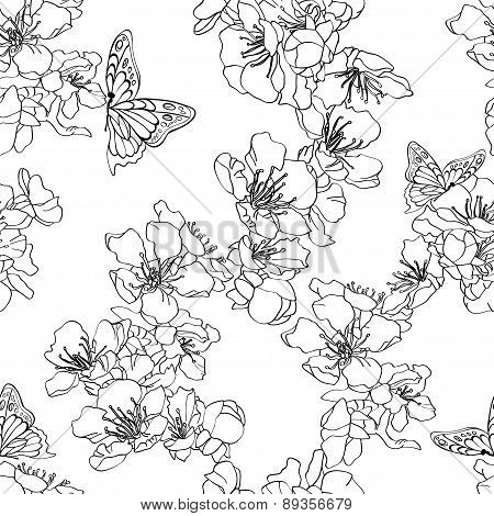 Monochrome, Black And White Seamless Background With Butterflies And Blossom Apricot.