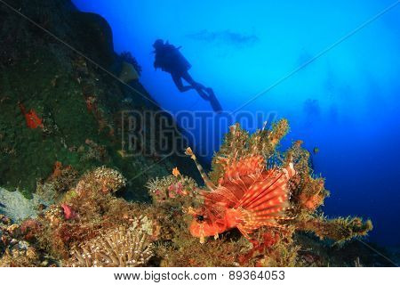 Lionfish, coral reef and scuba diver