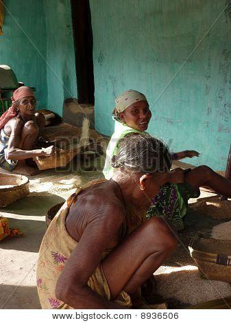 Old Village Women Thresh Rice