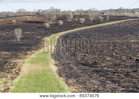 Burned Prairie