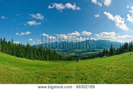 Panorama Of Tatras