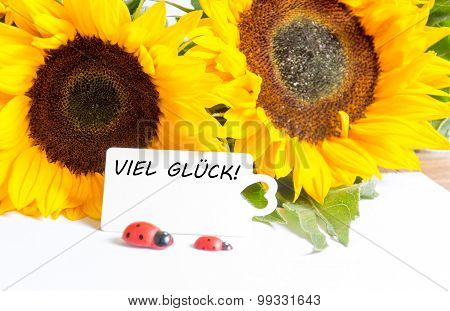 viel glück - the german words for good luck