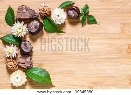 Autumn Composition Of Chestnuts, Pieces Of Bark And Dried Flowers