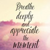 Vector Inspirational Quote - Breathe deeply and appreciate the moment  poster