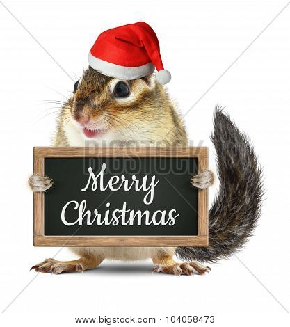 Funny Santa Claus, Chipmunk Hold Blackboard With Merry Christmas Wish