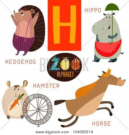 Cute Zoo Alphabet In Vector.h Letter. Funny Cartoon Animals:hedgehog,hippo,hamster,horse. Alphabet D