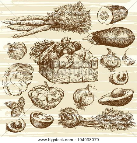 vegetables - hand drawn collection