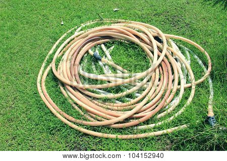 Old Water Hose
