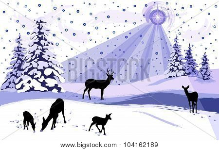 White Winter Landscape With  Deer
