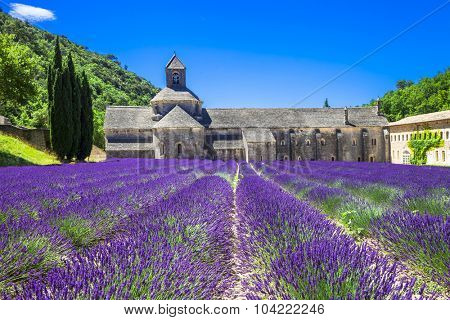 Provence - abbey of Senanque with blooming lavander.France