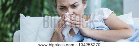 Very Stuffy Nose