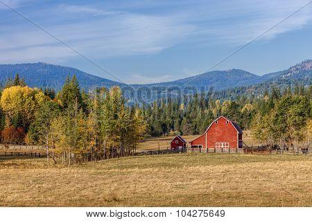 Barnyard Scene In Autumn.