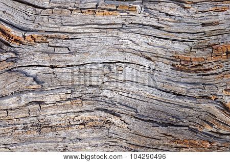 Dry Rotted Wood Background