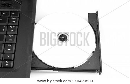 Dvd Blank In Tray Of Laptop