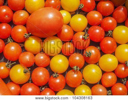Cherry Tomato Vegetables
