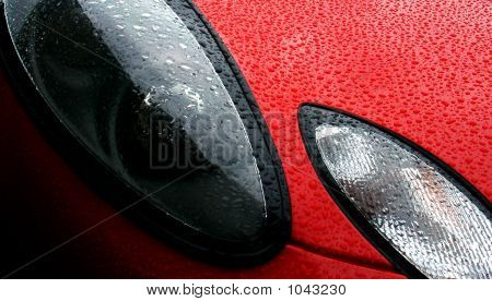 Raindrops Beading On The Front Of A Freshly Waxed Sports Car