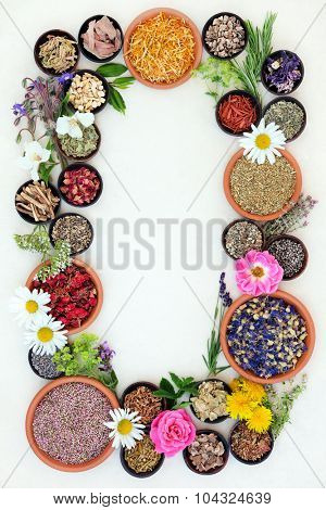 Medicinal flower and herb selection of summer used in alternative herbal medicine forming an abstract border over cream  paper background.