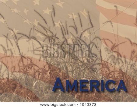 The Spirit Of America 1