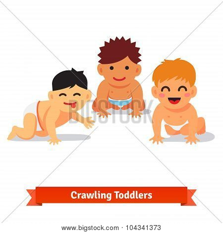 Group of infants. Baby boy toddlers having fun