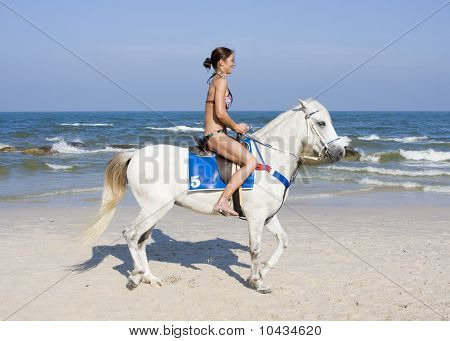 Girl rides on horse, sport and spare time on the beach poster