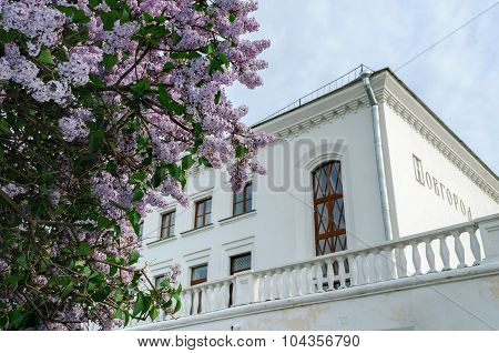 VELIKY NOVGOROD RUSSIA - MAY 29 2015. Railway station building framed by blooming lilac at spring evening