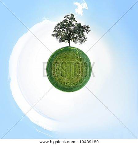 Small Planet With Single Tree