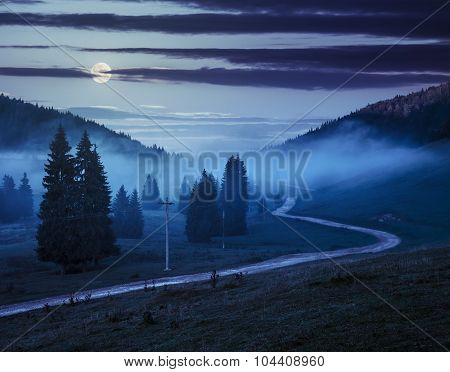 Road  Near Fir Forest In Foggy Mountains At Night