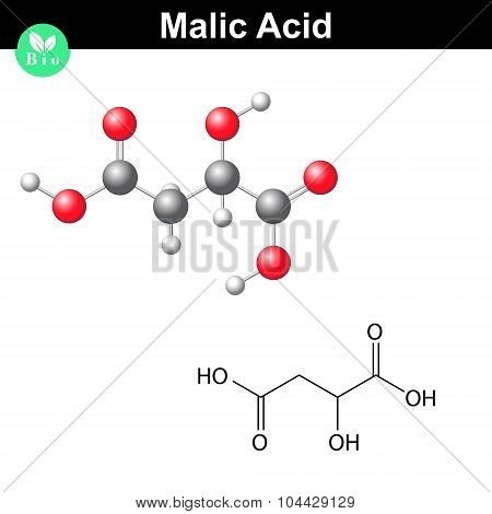 Malic acid molecule, malate structural chemical formula and model, 2d & 3d vector isolated on white background, eps 8 poster