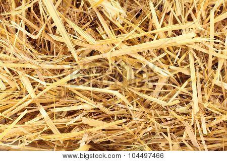 Cluster Straw