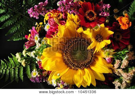 Autumn Flowers