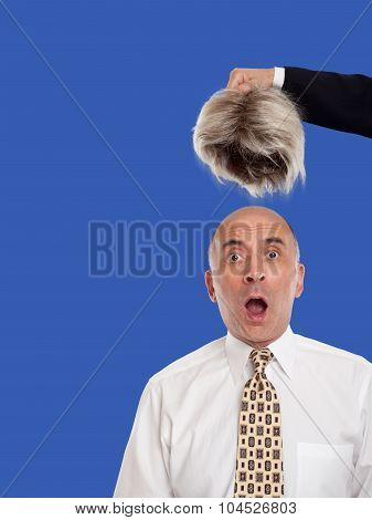 Bald man revealed by removing the toupee