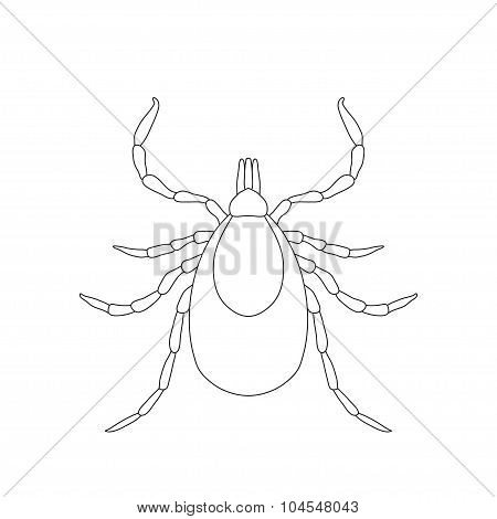 Tick parasite. Sketch of Tick. Mite. Tick isolated on white background. Tick Design for coloring book.  hand-drawn Tick. Vector illustration poster