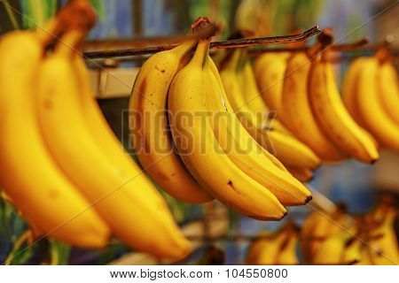 Rotten bananas sold in supermarkets in the Third World or economically underdeveloped countries poster
