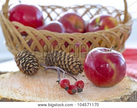 Autumnal composition with brier berry branch, apples and fir-cones