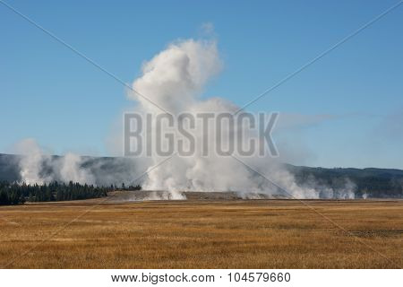 Steamy Landscape