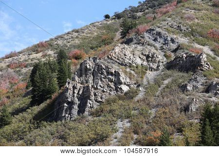 Rocky Mountain Fall Colors