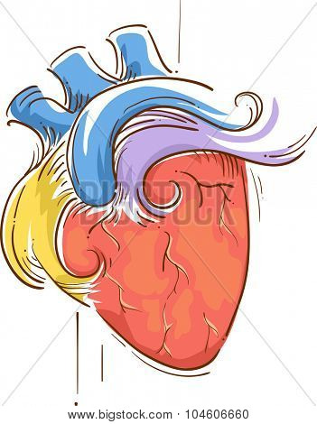 Colorful Sketchy Illustration of a Heart Pulsating with Life