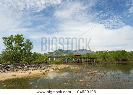 Indonesian Landscape With Mangrove And View Point Walkway