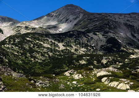 Pirin Mountain Landscape, Bulgaria