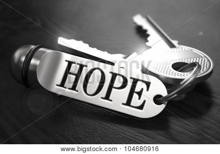 Hope Concept. Keys with Keyring.