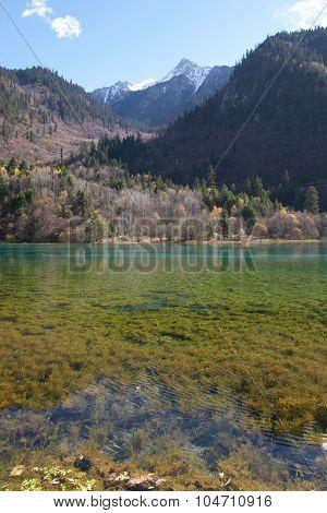 Colourful lake in Jiu Zhai Gou, Sichuan, China