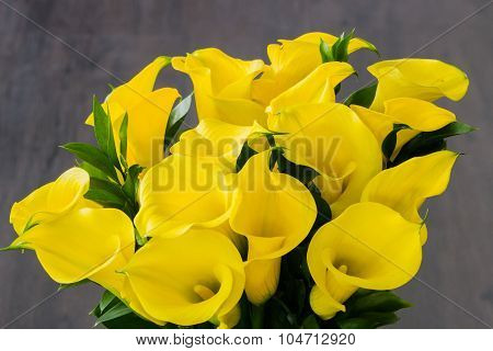 Close-up of yellow calla lilies