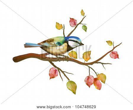 Watercolor bird tit on autumn branch