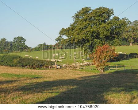 English countryside in Tanworth in Arden Warwickshire UK poster