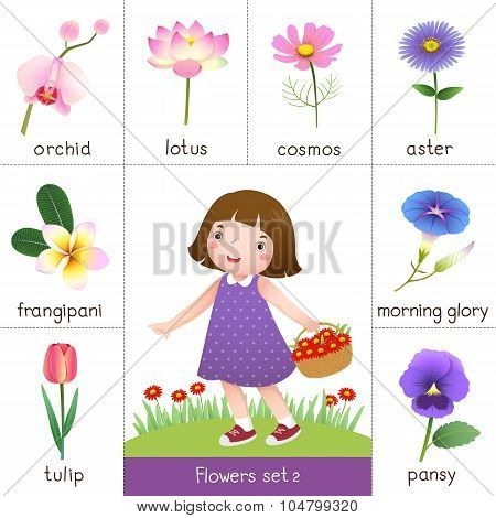 Printable Flash Card For Flowers And Little Girl Picking Flower