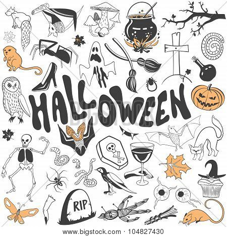 Halloween symbols vector collection