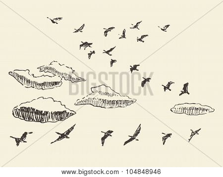 Hand drawn flying birds sky clouds migratory