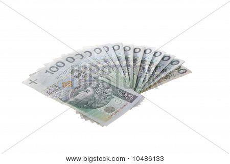 A Bunch Of Polish Money