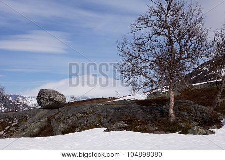 Norewegian Landscape, Hardangervidda
