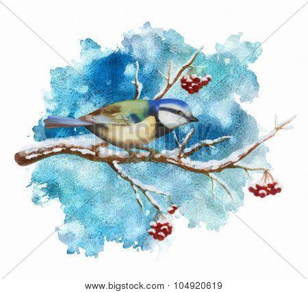 Pastel bird tit on winter branch